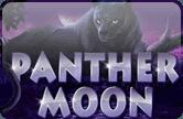 Играть на деньги в автомат Panther Moon