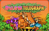 Лесной Телеграф онлайн